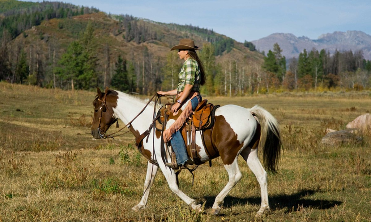 Chile, Costa Rica and Ecuador among the best places in the world for horse riding